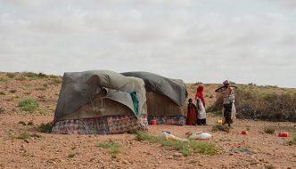 SOMALIA – diktarnationen